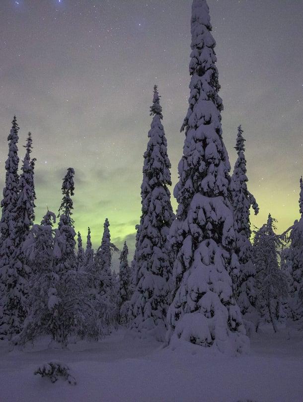 Kun asuu ulkomailla, saattaa alkaa kaivata pimeitä talviaamuja ja lumen tuoksua.