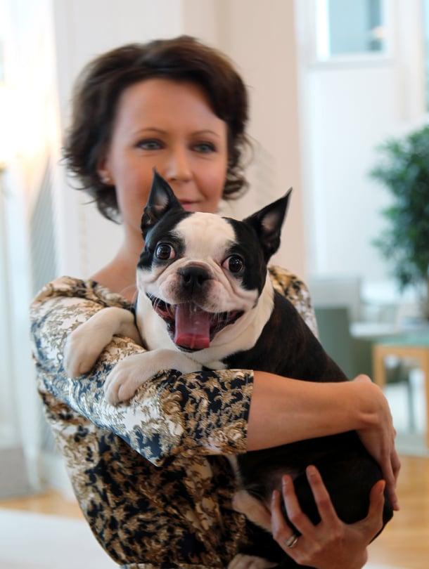 Bostoninterrieri Lennu saapui Jenni Haukion ja Sauli Niinistön perheeseen vuonna 2011. Helmikuussa sen elämässä alkaa uusi vaihe.
