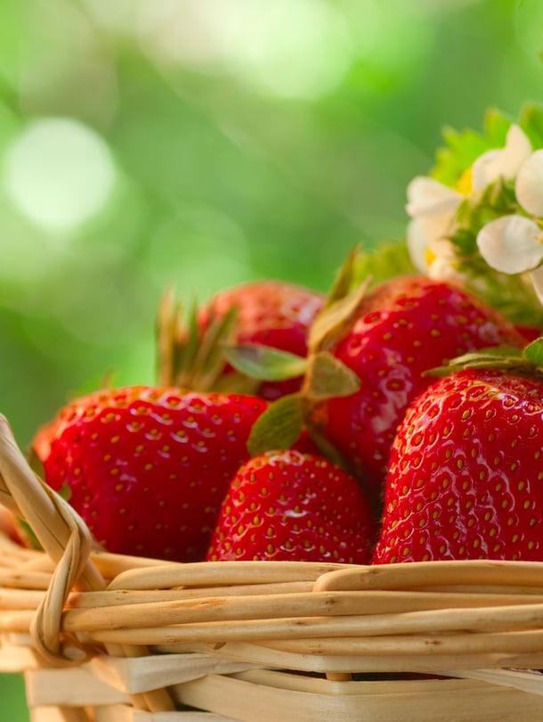 Helppo ja kesäinen tuliainen: nappaa torilta tai kaupasta mukaan mansikoita.