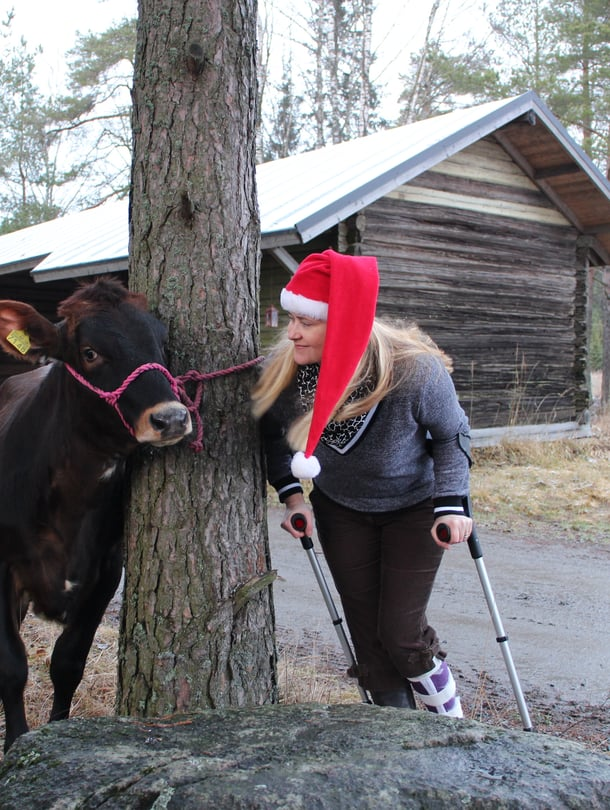 Mathilda-hieho odottaa maanviljelijän vaimon kanssa joulun tuloa, emäntä jalka kipsissä.