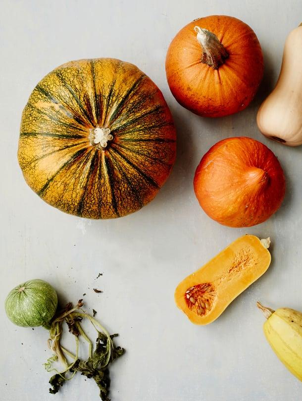 Iso oranssilihainen jättikurpitsa sopii pikkelssiin ja hokkaidokurpitsa paahdettavaksi.  Myskikurpitsan kuori on ohut ja spagettikurpitsan malto on säiemäistä.