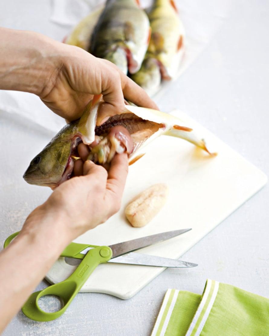 Avaa vatsa peräaukosta alkaen saksilla ja poista sisälmykset sekä selkärangassa kiinnittyneinä olevat munuaiset. Huuhdo vedellä. Pyyhi kalan maha talouspaperilla puhtaaksi ja kuivaa kala.