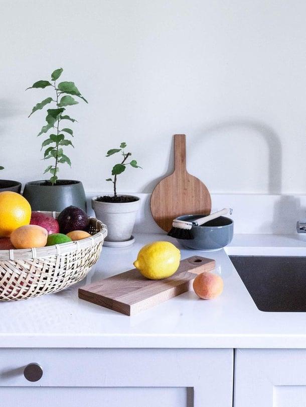 Monista hedelmistä kasvaa kelpo kasveja kotiin. Kokeilut opettavat ja onnistumiset kannustavat. Taustalla kasvavat pienet viikunat ja aprikoosi.