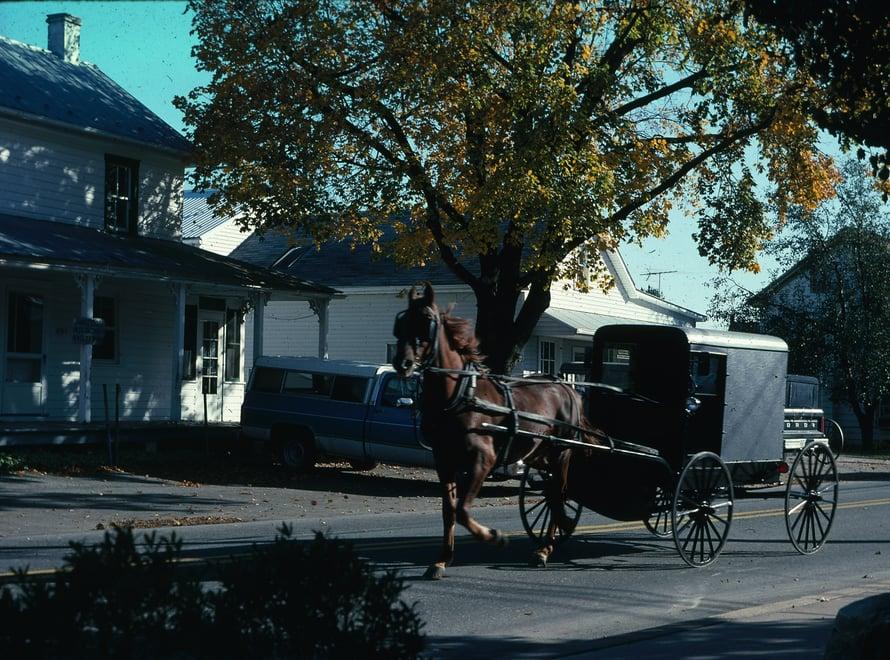 Hevoskärry eli buggy on tuttu näky Pennsylvanian amissiseuduilla.