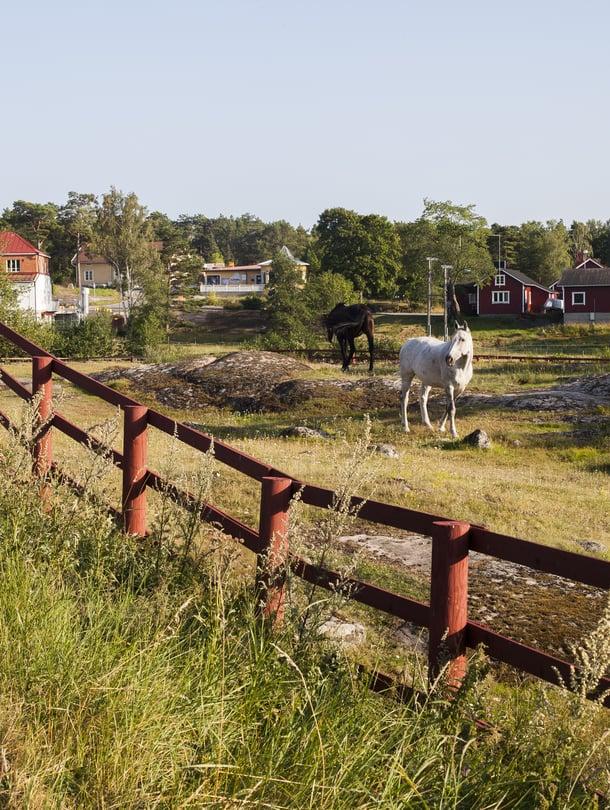 Idyllisiin maisemiin päästäkseen ei tarvitse matkustaa kauas. Saariston rengastiellä Korppoon kirkonkylä on kuin postikortista.