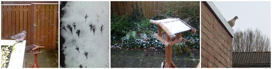 Josko kohta saadaan taas räntäkerros kuten näissä vanhoissa talvikuvissa?