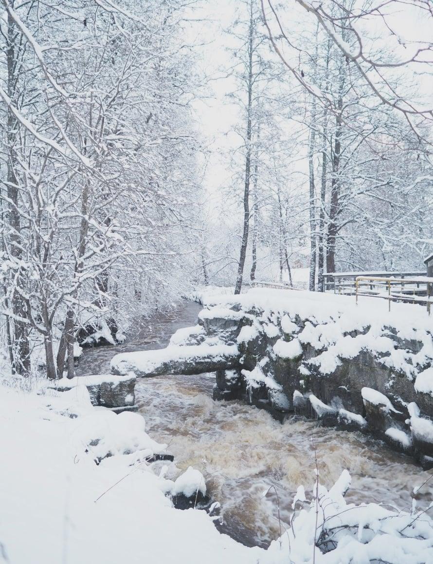 Kodin Kuvalehti – Blogit | Nelliina – Smurffikaakao