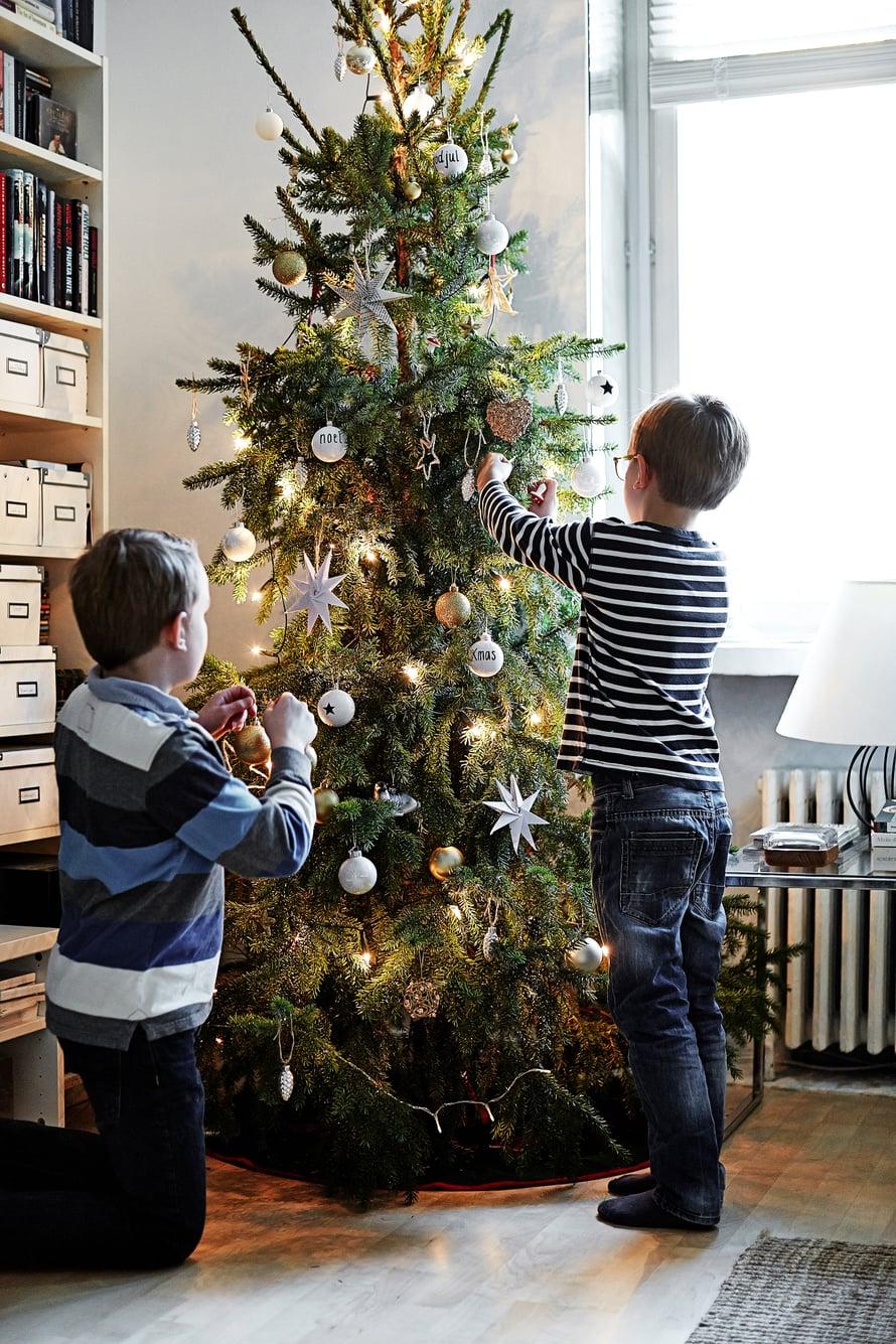 Kuusen koristelu on Oscarin ja Edwardin lempipuuhaa.