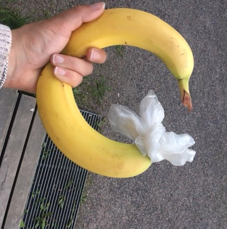 Tästä se lähtee! Uteliaisuus voitti, banaanitesti selvitti.