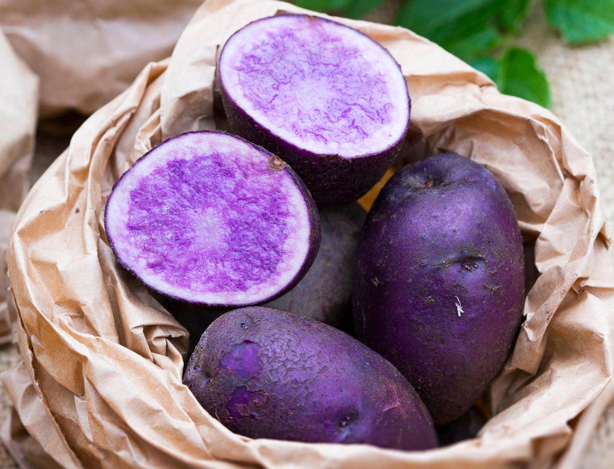 Läpisininen 'Blue Congo' on vanha perunalajike, joka kasvaa melko hitaasti. Sato valmistuu aiemmin, kun idätät siemenperunoita muutaman viikon.