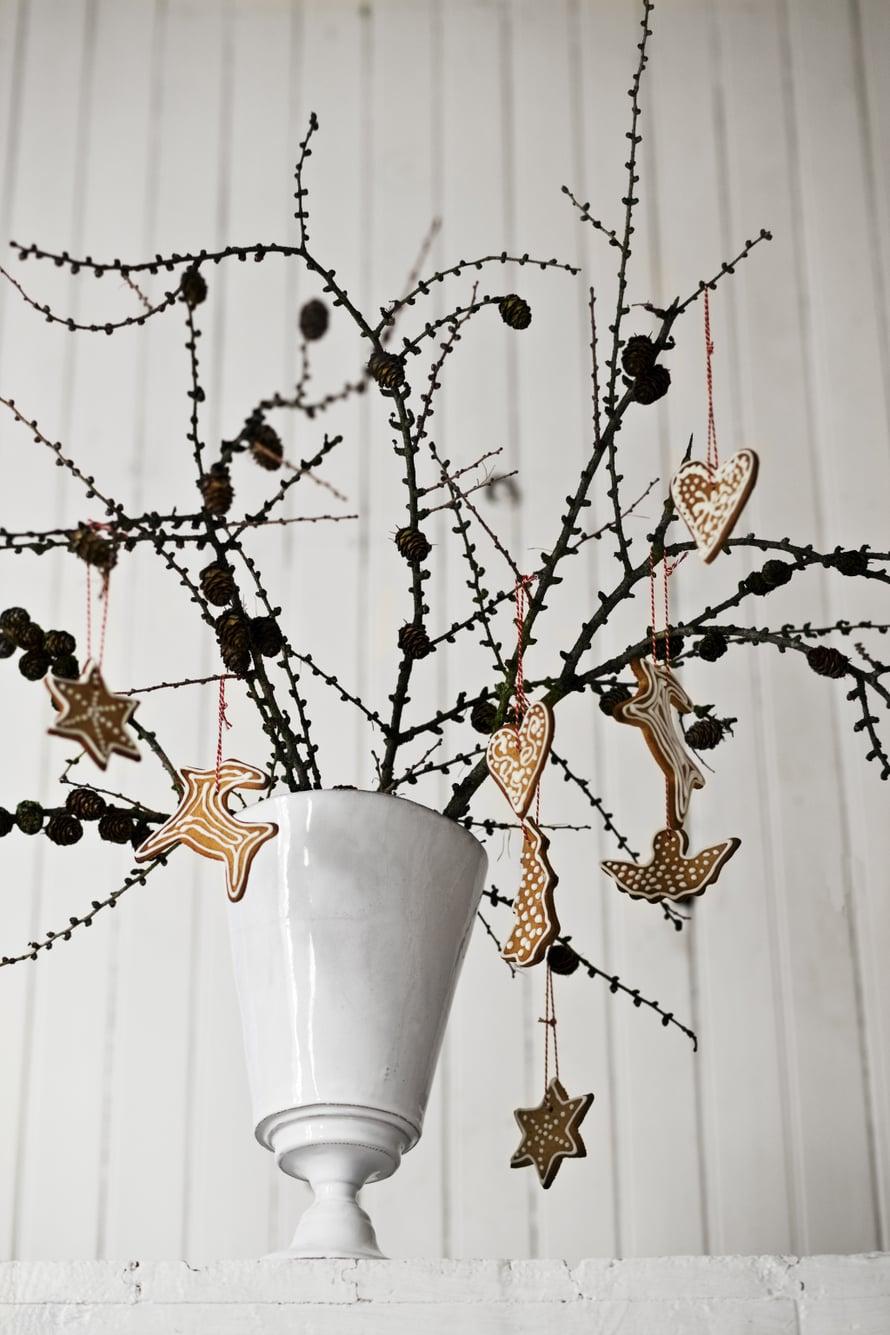 Myös kauniit lehdettömät oksat sopivat joulupuuksi. Graafisten oksien lomasta piparit erottuvat kauniisti.