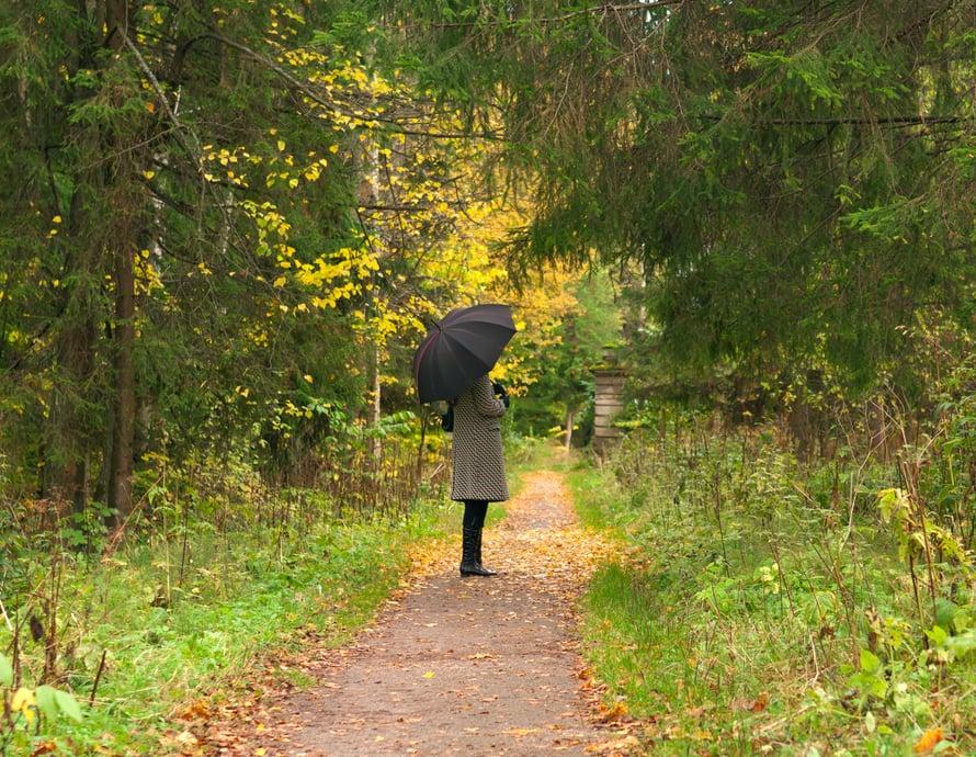 Metsän vehreys vie mielen meditatiiviseen tilaan.