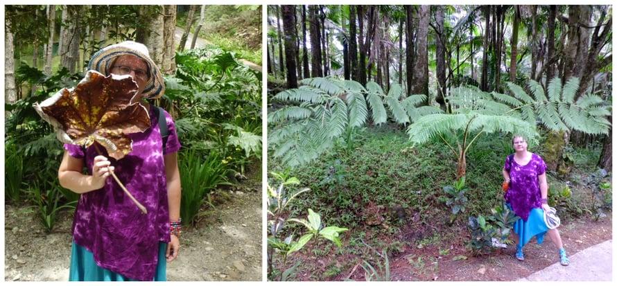 Viidakossa kaikki on isompaa.