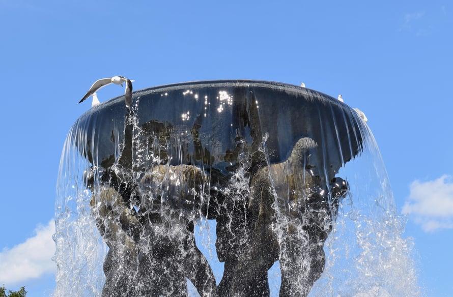 Lokitkin tykkäsivät suihkulähteestä helteellä.