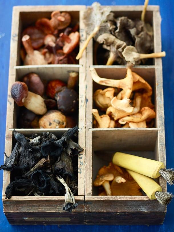 Pakastaminen on hyvä tapa saada sienet talteen.