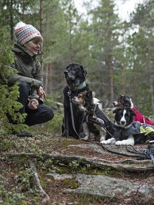 Tuulan Pessi-kissa sekä koirat Halti, Hetta, Ropi, Unna ja Aapa-pentu ovat parasta retkeilyseuraa.