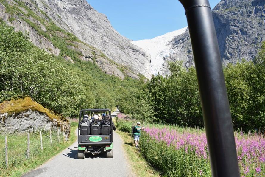 Kärrit ajaa jäätikölle, ja turisti ottaa kuvaa horsmasta. No, meitä on moneen junaan.