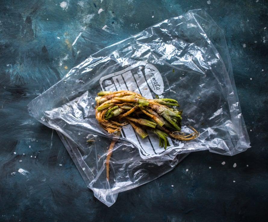 Kun ostan korianterinpuskia Aasia-marketista, leikkaan juuret talteen saksilla. Niitä voi käyttää kotitekoiseen currytahnaan tai lisätä patoihin antamaan makua. Ongin ne pois ennen ruoan tarjoilua. Korianterijuuret voi myös korvata hienontamalla curryn pohjaan korianteripuskan varsia ja lehtiä.