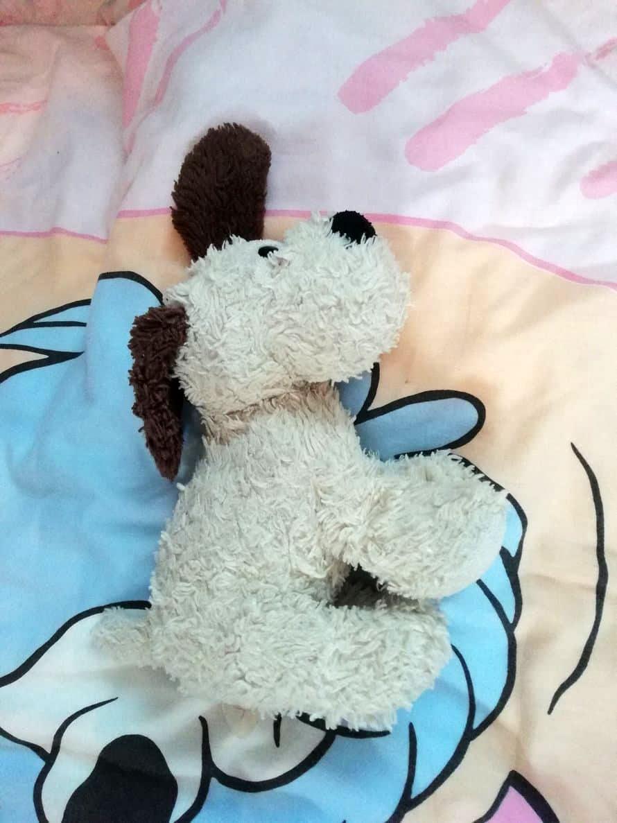 """""""Tyttärentytär Vilma ei pääse untenmaille ilman, että Helmi-koira ei olisi kainalossa. Helmi on joskus äännellytkin, mutta pesukoneessa käynti mykisti sen!"""" Pirjo"""