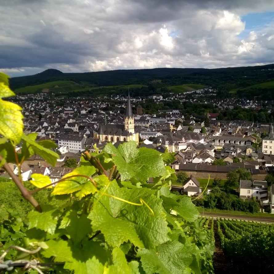Ahrweilerin vanhakaupunki ylhäältä köynöksiltä katsottuna.