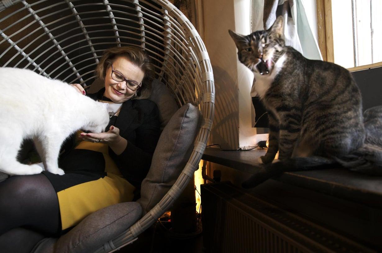 Minna Huotilainen on vakuuttunut siitä, että kissojen silittely vähentää stressiä. Helsinkiläisessä kissakahvila Helkatissa hän silittelee vieraita kissoja, mutta on hänellä kotonakin yksi persoonallinen kissayksilö Iiris.