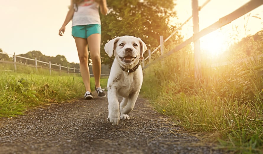 Vaikka kävelisit kuinka alakuloisena, liike auttaa.
