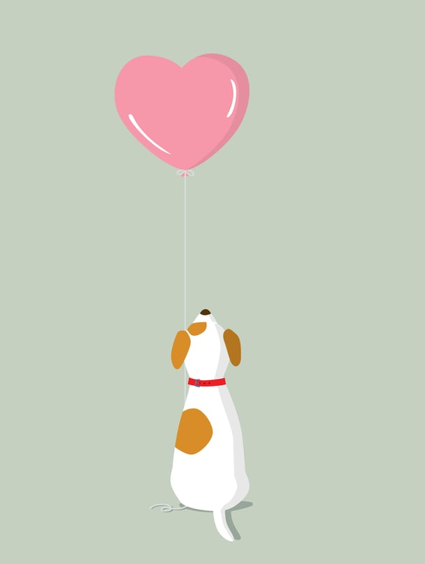 Elämästä puuttuu iso pala, kun koiraystävää ei enää ole.