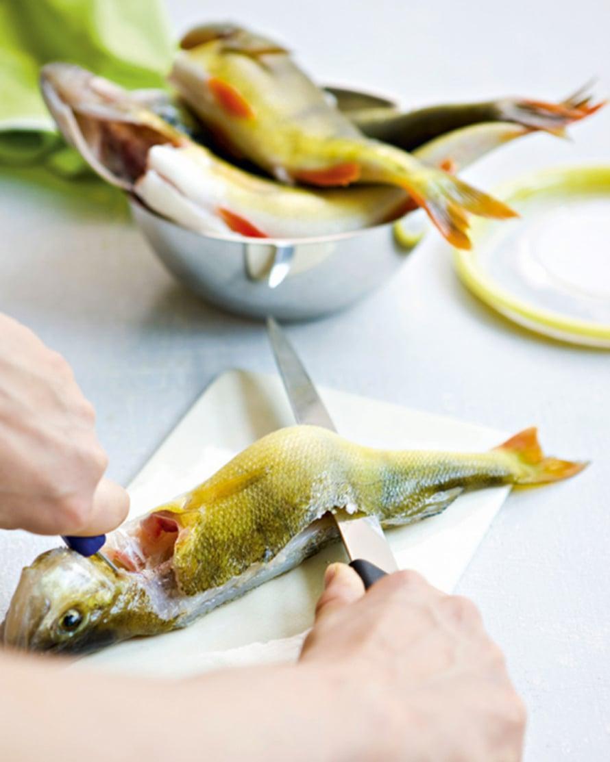 Tee fileerausveitsellä viilto kalan niskaan ja kuljeta veitsen terää kalan selkärankaa myöten pyrstöön saakka. Irrota näin molemmat fileet selkäruodosta.