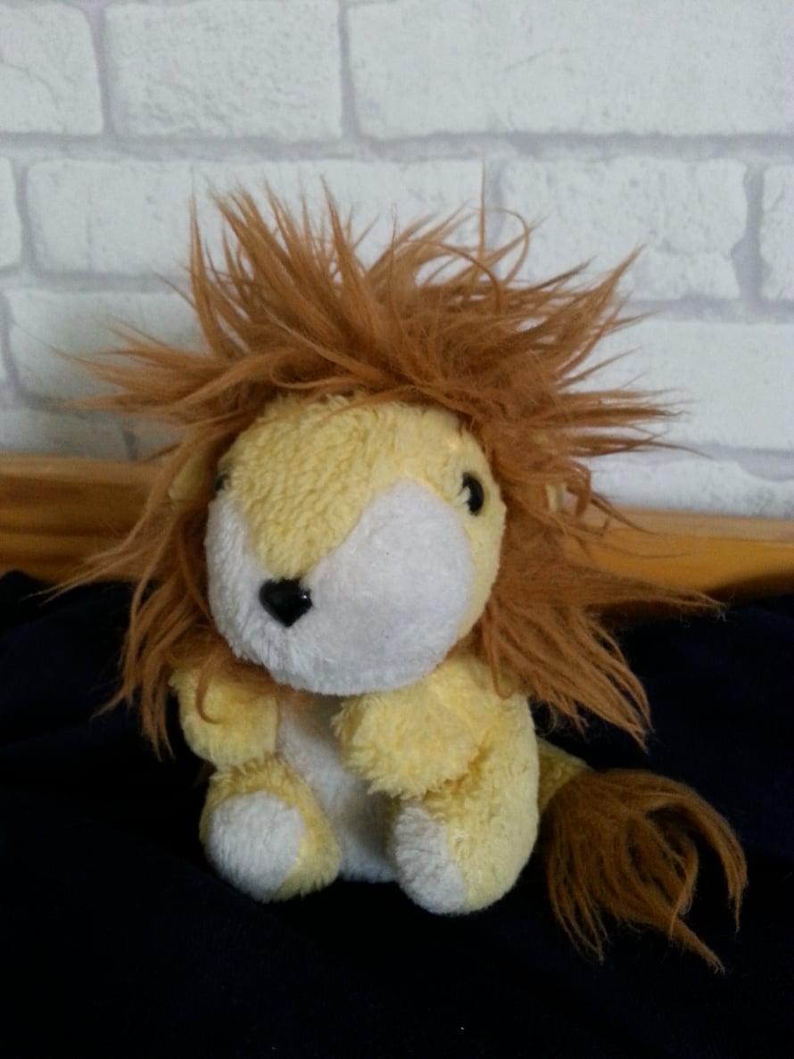 """""""Olin 2,5-vuotiaana äitini kanssa vaateostoksilla. Kesken ostosten huomasin isossa verkkokorissa pieniä pehmoleluja: vaaleanpunaisia possuja ja keltaisia leijonia. Nuoleskelin yhden pehmoleijonan hännän märäksi, joten äidin oli ostettava se minulle. Annoin sen nimeksi Leo. Seuraavana kesänä Leo hävisi. Sitä ei löytynyt mistään, kunnes talven jälkeen isäni laittoi mökillä saappaita jalkaan, ja löytyi Leo saappaasta. Leo on ollut monessa mukana 30 vuoden aikana ja se on ehdottomasti rakkain leluni."""" – Leijonankesyttäjä"""