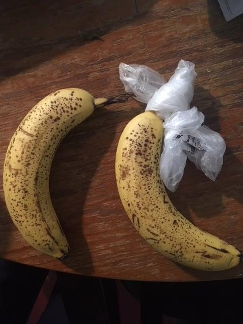 PÄIVÄ 6: Viiden vuorokauden aikana banaanit ovat kypsyneet yhtä paljon.