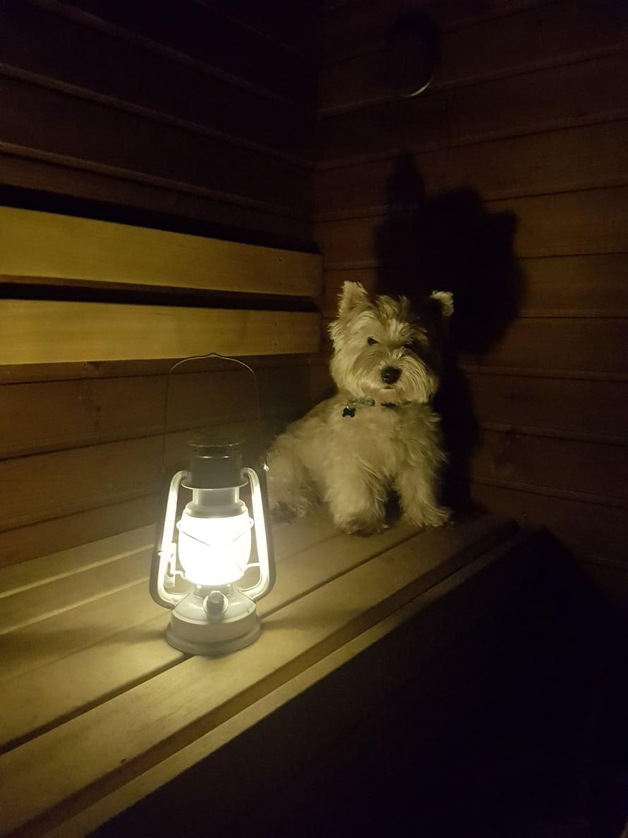 Eetun suosikkipuuhaa on saunominen. Ingan mukaan se on aina ensimmäinen ylälauteilla, löylyjä kaihtamatta.