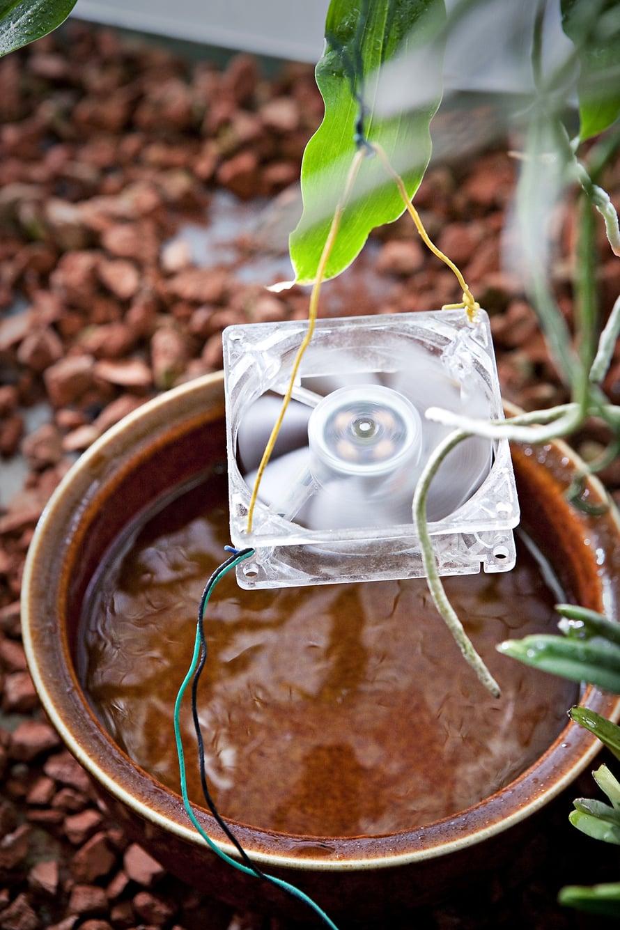 Oili purki vanhoista tietokoneistaan tuulettimet ja asensi ne orkidealasikoihin vesiastian ylle kierrättämään kosteutta. Toimii!
