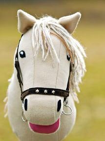 Hevosen värin voi valita sen ratsastajan kanssa yhdessä.
