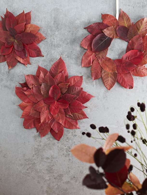 Lehtiruusukkeet ja kranssi on tehty tuoreista lehdistä. Kuivuessaan ne jäävät kauniisti koholle.