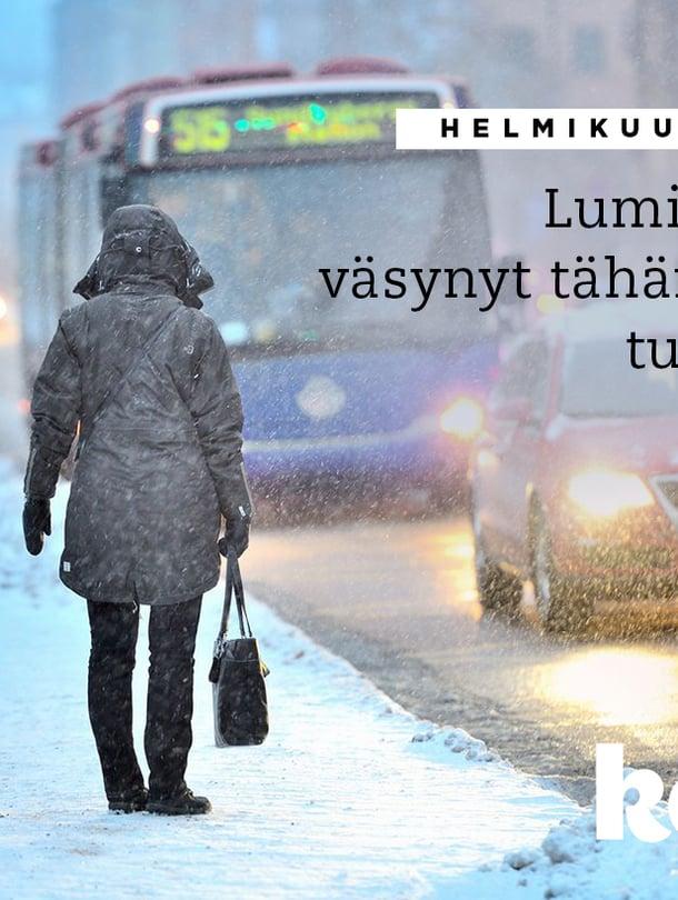 """""""Helmikuu menee aina hujauksessa"""", kokee lumipyrykuvasta runon kirjoittanut Sirpa."""