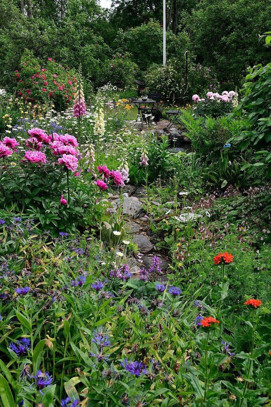Riita-Maijan ja Matin puutarhassa kasvaa yli 50 erilaista ruusua, pioneja on yli 20 lajiketta. Syksyisin Riitta-Maija ja Matti istuttavat puutarhaansa noin 500 uutta sipulikasvia entisten lisäksi.
