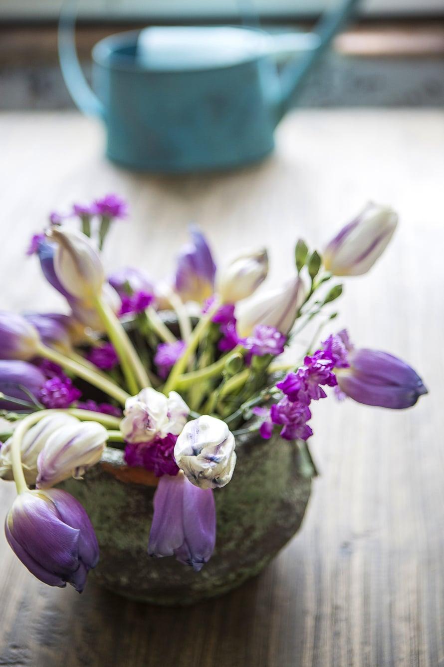 Rennot tulppaanit laitetaan vanhaan kiviruukkuun kevään kunniaksi. Hieman pitkäksi venähtäneinä ne sopivat parhaiten rappioromanttisiin tunnelmiin.