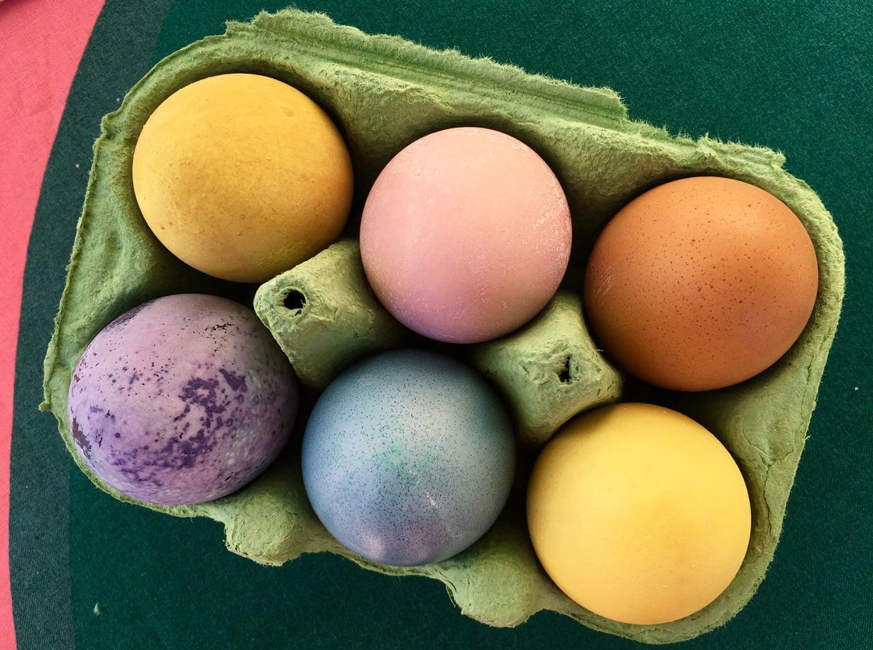 Ruoka-aineilla värjätyt munat ovat kauniita koristeita pääsiäispöydässä. Mikä parasta, ne voi myös syödä. Kennon munat on värjätty vihrellä teellä (ylhäällä vasemmalla), puolukalla, kahvilla, mustikalla, punakaalilla ja kurkumalla.