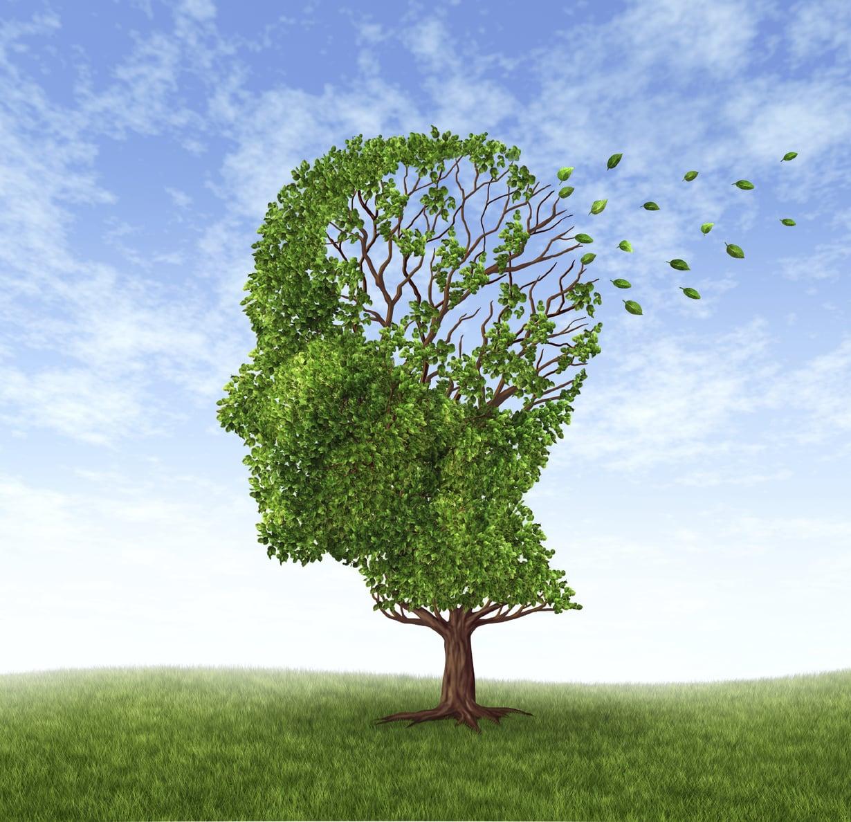 Muistitesti, jonka lääkäri tekee, kun epäilee muistisairautta.