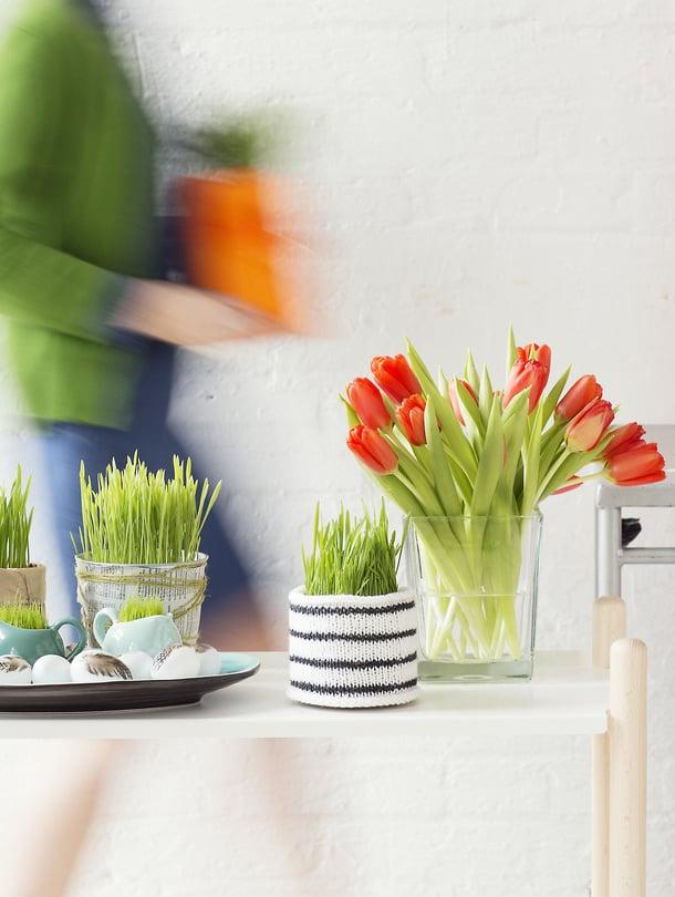 Komeaa ja tukevan näköistä pääsiäisruohoa saa myös vaihtamalla tutun rairuohon vaikkapa ohraan tai vehnään.