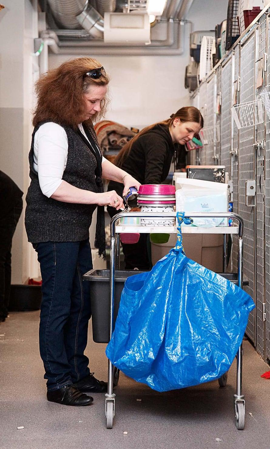 Jokaiselle eläimelle on oma kuppi. Työharjoittelija auttaa Heidiä ruuan jakamisessa.