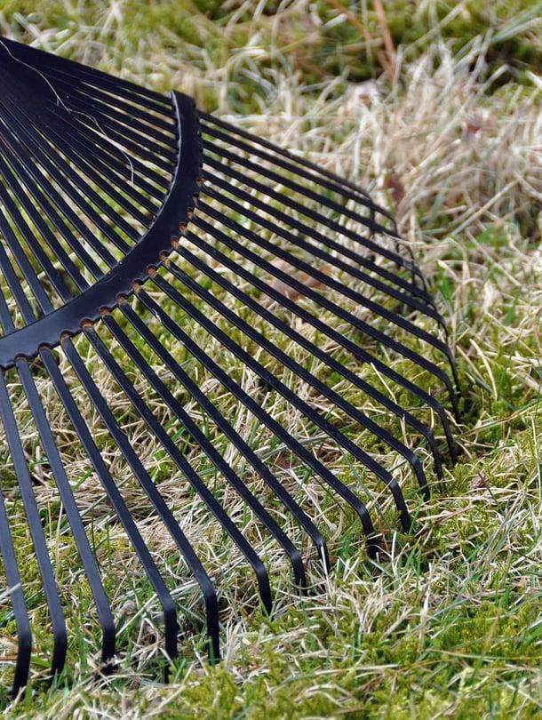 Kärähtikö nurmikko kesähelteillä? Palaneet läikät voi paikata jo syksyllä.