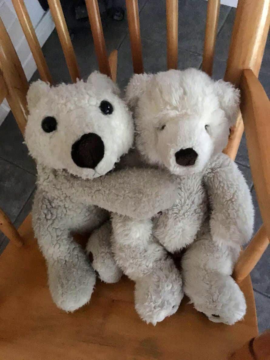 """""""Meillä asuvat koko perheelle rakkaat jääkarhut Jesse ja Jassu. Jesse on jo 22-vuotias ja Jessen rakas Jassu 18. Pariskunta ilahduttaa haleilla ja antaa """"taikatassua"""", kun joku on kipeänä."""" Karhuäiti"""